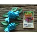 Dekoracje róża średnia angielska niebieska
