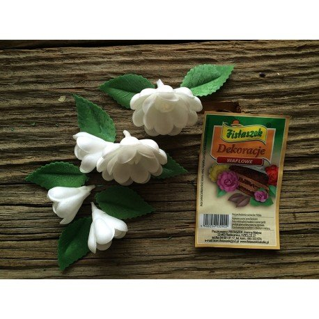 Dekoracje róża średnia angielska biała